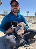 Kitties on the beach in Oceanside