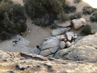 That's me belaying - can you spot the kitties?