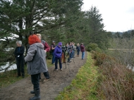 Spotting shore birds at Sitka Sedge